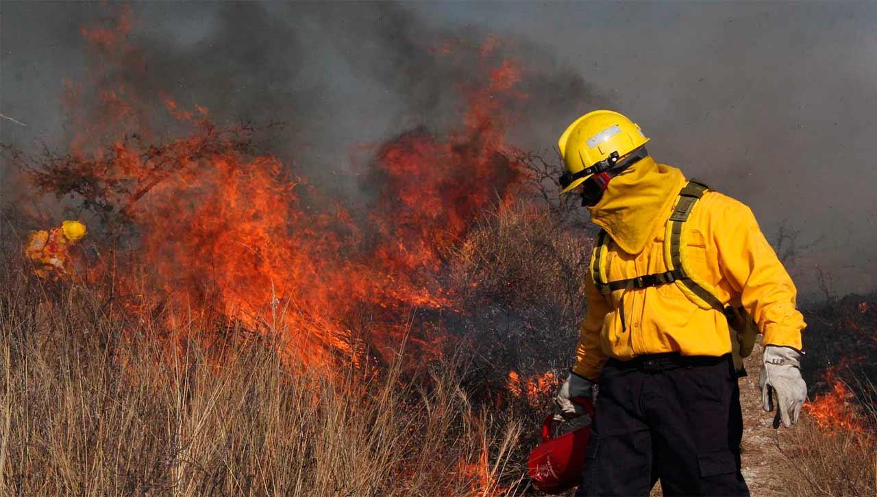 Estipulan prohibición de la roza y quema en los 122 municipios