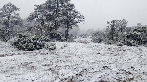 Tormenta invernal genera nevadas en ocho municipios de Chihuahua