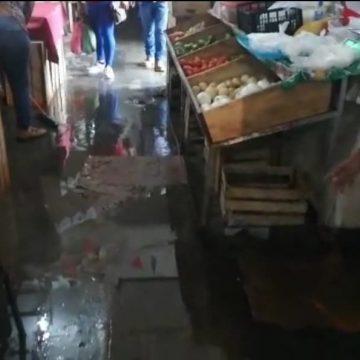 Temen brote de Dengue por filtraciones de agua en el mercado del pueblo de Huehuetán