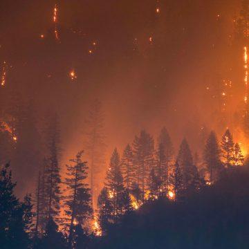 El cambio climático avanza implacablemente a pesar de la pandemia COVID-19, advierten los científicos