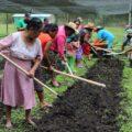 CONANP Y Regal Springs México cuidan la Reserva de la Biosfera Selva el Ocote