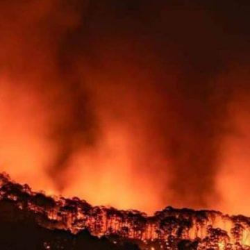 Incendio forestal consume el Cerro de la Cruz en Uruapan, Michoacán