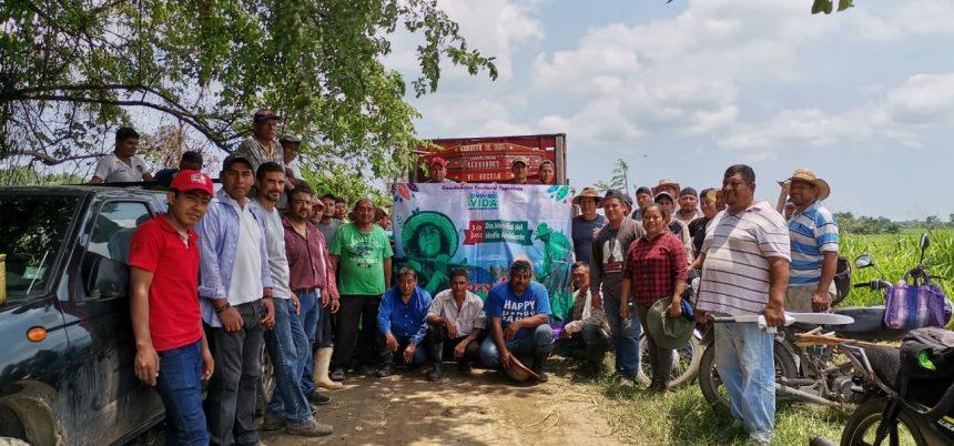 Siembra comunidad UNACH 3 mil árboles de Huanacaxtle y Ciricote
