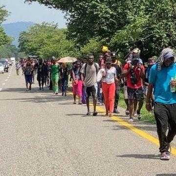Caravana de más de 500 migrantes avanzó por la carretera costera de Chiapas